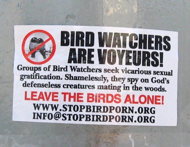 bird_porn_sticker_01.jpg